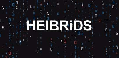 HEIBRiDS matrix