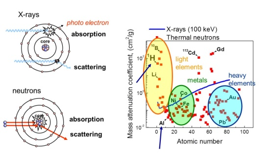 Complementarity of neutrons and X-rays