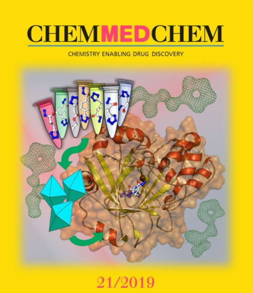 The study is displayed on the cover of the journal Chemmedchem.