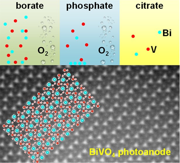 The results allow to assess differences in the stability of BiVO<sub>4</sub> in various pH-buffered borate, phosphate and citrate electrolytes.