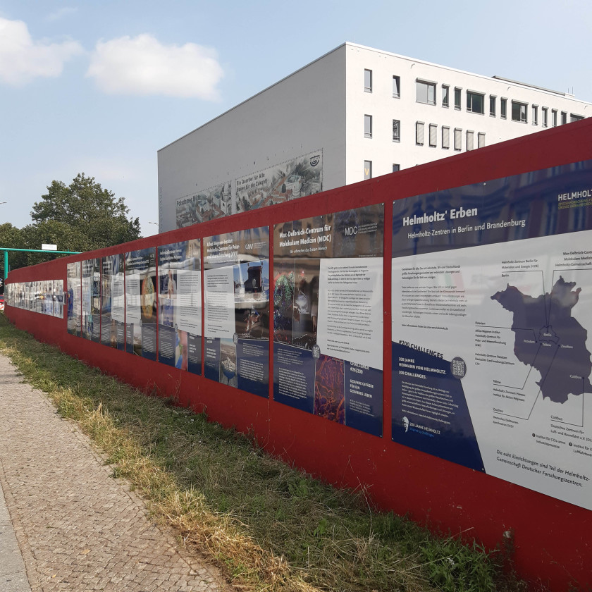 The construction fence exhibition is centrally located on Friedrich-Ebert-Straße in Potsdam's city centre.