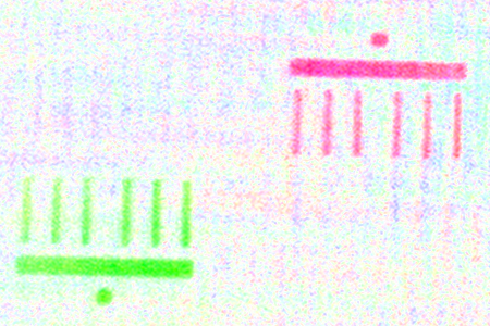 The imaged Brandenburg Gate is only a few micrometres in size.<br />The scientists took the green and red pictures of the model<br />merely 50 femtoseconds apart.
