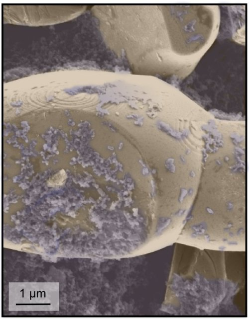 Nano-features of the structure were recorded with  a scanning electron microscope over a much smaller section of the material.