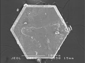 Hexagonal single crystal of SrCo<sub>6</sub>O<sub>11</sub>, with a sample diameter of approximately 0,2 millimetres.