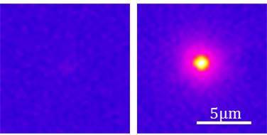 An infrared camera captures the luminescence (emission of light) after optical excitation of both nanostructures.