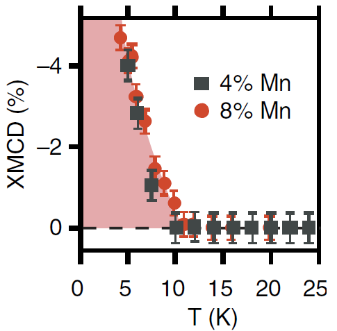 These data show that magnetic ordering in samples with 4 % and 8 % manganese is observed only below 10 K.