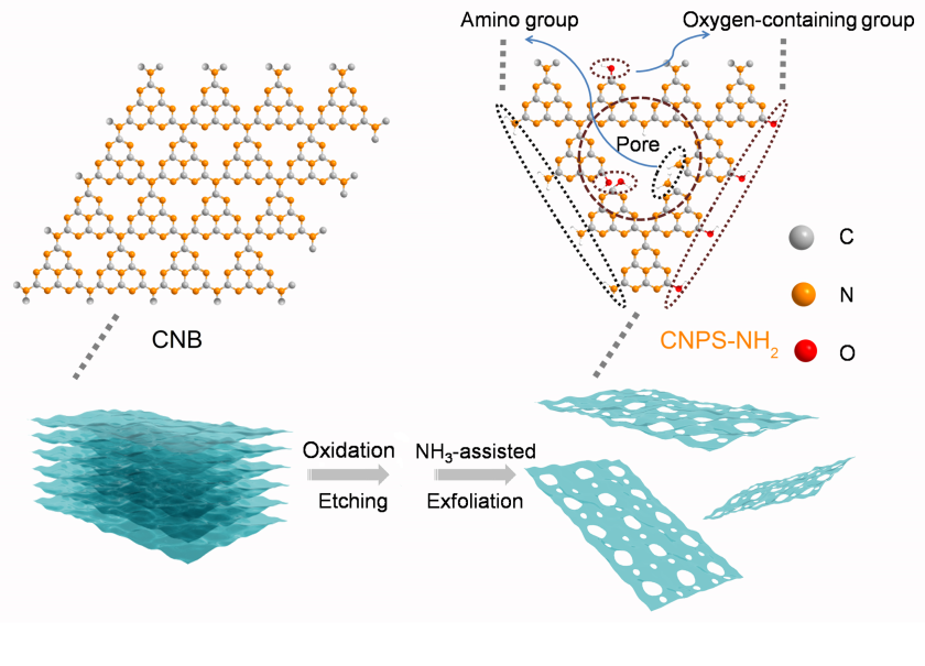 A heat treatment produced samples consisting of individual nanolayers with large pores containing different amino groups with specific functionalities.