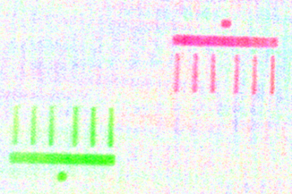 The imaged Brandenburg Gate is only a few micrometres in size.The scientists took the green and red pictures of the modelmerely 50 femtoseconds apart.