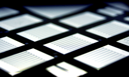 Comb-shaped, interdigitated metal contacts on the side facingaway from the sun of back-contact silicon heterojunction solarcells. Pictured are several test cells on a single silicon wafer.Image source: HZB/Jan Haschke