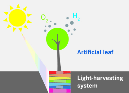 Artificial catalysts imitate natural photo-synthesis.Image