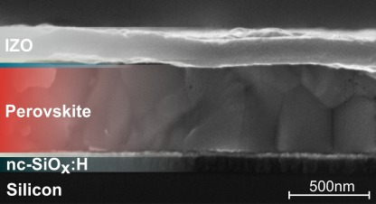 The SEM image shows the cross-section of a silicon perovskite tandem solar cell.