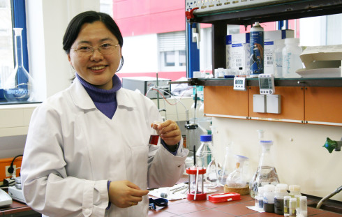 <p>Prof. Dr. Yan Lu receives a professorship at the University of Potsdam</p>