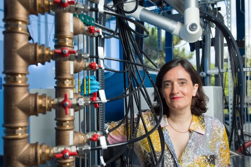 <p>Professor Catherine Dubourdieu is head of the HZB Institute Functional thin film oxides for energy efficient future IT. Credit: M. Setzpfand/HZB</p>