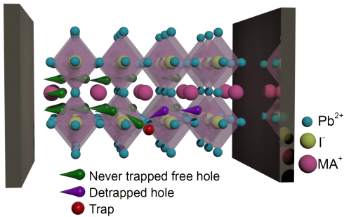 <p>Five different types of defects in MAPI-perovskites were examined and characterised. The result: a large proportion of defects is not trapping the charge carriers for long.</p>
