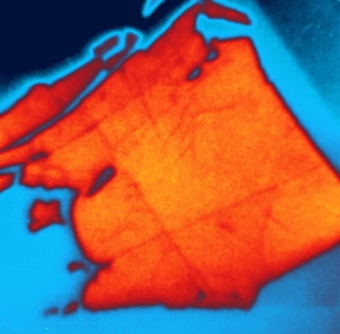 <p>Picture: The sample consisted of one layer of WSe<sub>2</sub> (orange) on top of MoS<sub>2</sub> (blue). The SPEEM-microscopy reveals coupling between both layers and charge transfer. credit: F. Kronast/HZB</p>