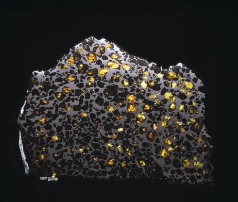 <p>Hard disc from space: the Pallasite meteorite, studied by Harrison, contains information about the early solar system.<br /><em>Credit: Image copyright Natural History Museum, London. Sample used from the Natural History Museum Meteorite Collection.</em></p>
