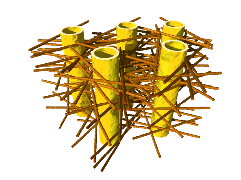 <p>Illustration of the complex biostructure of dentin: the dental tubuli (yellow hollow cylinders, diameters appr. 1 micrometer) are surrounded by layers of mineralized collagen fibers (brown rods). The tiny mineral nanoparticles are embedded in the mesh of collagen fibers and not visible here. Credit: JB Forien @Charité.</p>