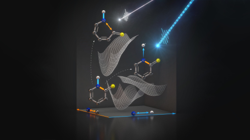 <p>The experimental data show, how a light pulse dissociates a hydrogen nucleus from the nitrogen atom without destroying important bonds within the molecule. Credit: Th. Splettstösser/HZB.</p>