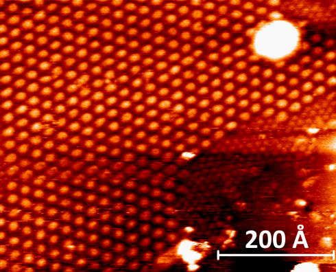 <p>Scanning Tunneling Microscopy shows the regular corrugation pattern of graphene over clusters of gold.</p>